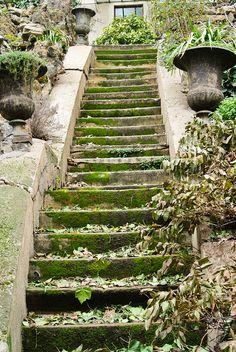 Stairs, Paris XX
