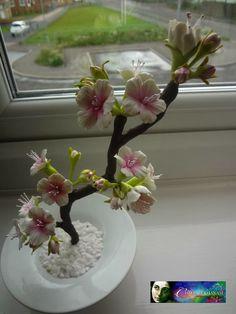bonsai cold porcelain