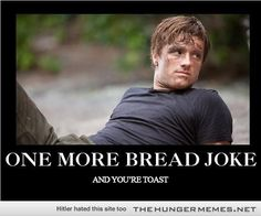 hunger games memes - Google Search