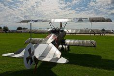 ..._Fokker Dr.I #triplane #WW1