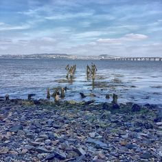 #rivertay #posts #wharf #pier Photos from my travels