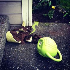 Home Depot Raised Garden Bed #DigIn #Ad