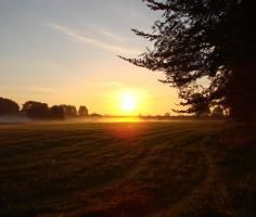 """sunrise @menorcahorses.com, studfarm """"Het Soerhuis"""""""