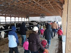 Celebrate Presidents Day on the farm!  Escape cabin fever at the 11th Annual Winter Farm Tour at Graywall Farms in Lebanon. Visitors are invited to enjoy an outdoor open house, Monday February 20th from 1-3pm. Meet the farmers behind Connecticut's recognizable local milk brand and learn about dair