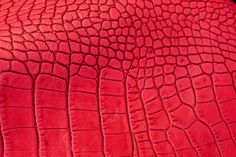 Lineapelle... neon exotic leather #leather #lineapelle @lineapellefair
