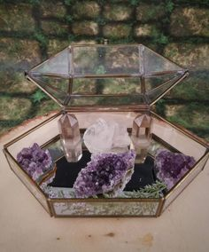 Terrarium - Jewelry Box - Healing Crystals - Terrarium Kit - Glass Terrarium - Crystal Garden - Metaphysical - Raw Crystals and Stones