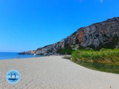 - Zorbas Island apartments in Kokkini Hani, Crete Greece 2020 Crete Greece, Walking In Nature, Palm, Island, Beach, Apartments, Water, Outdoor, Sport