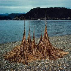 Andy Goldsworthy Bamboo spires