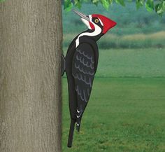 3D Giant Pileated Woodpecker Pattern Distincitive coloration and large size are the trademarks of this unique bird. Make our giant version to display in your yard. #diy #woodcraftpatterns