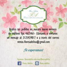 Como tú eres un cliente muy importante para nosotros.   Te queremos informar que tus pedidos los puedes realizar en nuestro número de teléfono fijo: 4623461- Llamarnos o enviarnos un mensaje al: 3125439817 o a través del correo electrónico: ventas.floresadelita@gmail.com  Te esperamos :) #Floristerías #Bogotá #FelizMartes