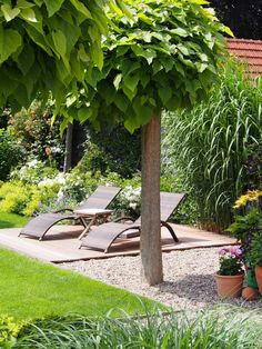 front gardens have possibilities don 39 t make them a poor. Black Bedroom Furniture Sets. Home Design Ideas
