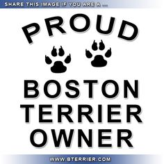 Are you Proud to be a Boston Terrier Owner? Like & Share this image if you are a proud Boston Terrier Owner! Why are you proud to be the owner of a Boston Terrier? Leave your comments! http://www.bterrier.com/are-you-proud-to-be-a-boston-terrier-owner/