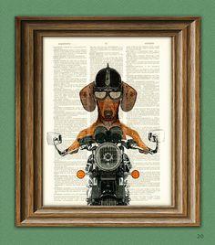 Doxie Danger Motorcycle Stuntman DACHSHUND dog by collageOrama, $7.99
