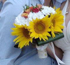 Floarea soarelui!