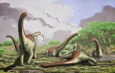 Paleontologists discover new species of titanosaurian dinosaur in Tanzania  - http://scienceblog.com/74277/paleontologists-discover-new-species-titanosaurian-dinosaur-tanzania/