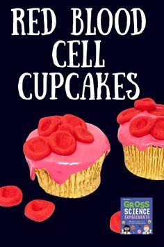 On Red Ted Art we share these Gory Halloween Cupcakes - STEAM Halloween Fun from the new Gross Science Books!