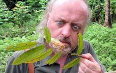Bill Bailey's Jungle Hero (Sun, 8pm, BBC2)