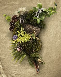 International still life and advertisning photographer Niklas Alm working with clients such as Adidas, Amnesty International, Bosch, Electrolux, Toyota and SAS. Fantasy Romance, Still Life Photography, Grapevine Wreath, Be Still, Display, Landscape, Amazing, Pretty, Green