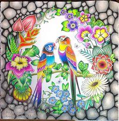 #adultcolouring #johannabasford #magicaljungle #colouringforadults