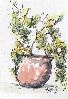 Planta de Saldán #3