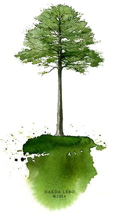 Pine tree!  Illustrator Narda Lebo