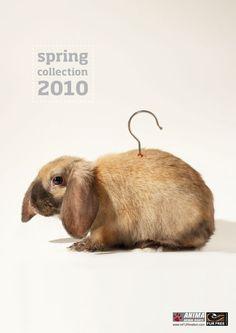 International Design Against Fur poster Competition