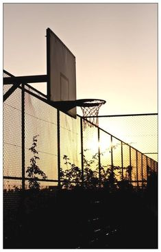brand new d115f c48e2 Milestones of College Basketball. Basketball is a favorite pastime of kids  and adults alike.
