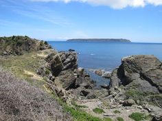 Mana Island from Titahi Bay - click for the story of me discovering rock-scrambling!