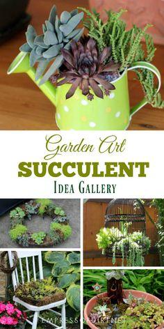 Succulent Garden Art Project Ideas #succulents #gardening #gardenideas #gardenart #empressofdirt