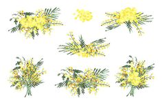 Mimosa flores imágenes prediseñadas acuarela dibujadas a   Etsy Wedding Stationery Sets, Yellow Wedding Flowers, Flower Logo, Yellow Paper, Clipart, Watercolor Flowers, How To Draw Hands, Hand Painted, Etsy