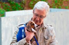 #pogdogs returns in the autumn for a new series all about #Battersea - exciting!