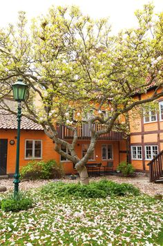 Cute house in Ystad, Sweden