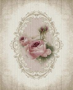 Images d'autrefois: fleur