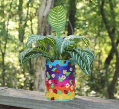 Lady Bug Planter or Centerpiece by BFG.