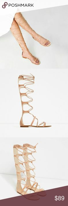 Zara leather Roman  sandal  (6650) New with tag.  EUR  37/38/39/40 US  6.5/7.5/8/9  Roman style nude leather sandals. Ankle strap fastening. Heel height of 1.2 cm.  Composition UPPER 100% cow leather LINING 100% polyurethane SOLE 100% vulcanized rubber SLIPSOLE 100% vulcanized rubber  Color Natural Zara Shoes