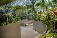 Inside the Amazon Spheres: The plants, the architecture, and a transforming city - Curbed Seattle Seattle Architecture, Landscape Architecture Design, Landscape Plans, Garden Landscape Design, Landscape Architects, Futuristic Architecture, Interior Garden, Interior And Exterior, Modern Entry