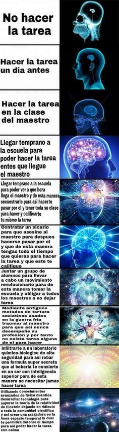 Sabiduría Cósmica +<+