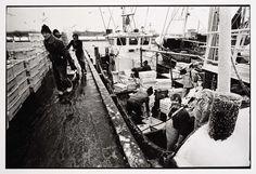 HD57 Elvira. Aan de kade, Joost Guntenaar, 1981