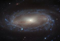 Lying over 110 million light-years away from Earth in the constellation of Antlia (The Air Pump) is the spiral galaxy IC 2560, shown here in an image from NASA/ESA Hubble Space Telescope. At this distance it is a relatively nearby spiral galaxy, and is part of the Antlia cluster — a group of over 200 galaxies held together by gravity. This cluster is unusual; unlike most other galaxy clusters, it appears to have no dominant galaxy within it. Image: ESA/Hubble & NASA Acknowledgement: Nick…