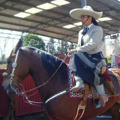 Quien dijo miedo.. Horses, Margarita, Animals, Animales, Animaux, Horse, Margaritas, Animal, Animais