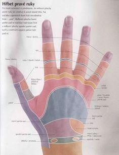 energie pro naše tělo a duši   Reflexní terapie Nordic Interior, Tai Chi, Ayurveda, Diy Beauty, Body, Massage, Health Fitness, Exercise, Relax