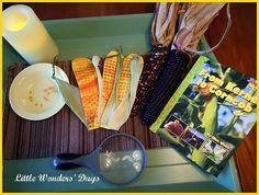 Corn theme - great ideas! -KC