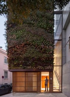 green wall home lisbon
