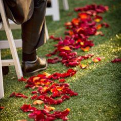 Rose petal aisle