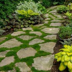 630 Best Grand Garden Designs Images In 2020 Garden Design