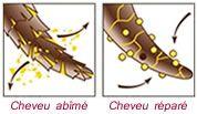 Réparer les cheveux abîmés : comment agissent les traitements aux protéines/kératine ?