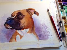 Paint Your Pup! Create Artistic Watercolor Pet Portraits is part of - Learn how to easily photograph and how to creatively paint a portrait of your pet with watercolors Watercolor Tips, Watercolour Tutorials, Watercolor Animals, Watercolor Techniques, Art Techniques, Watercolour Painting, Painting & Drawing, Watercolors, Painting Tutorials