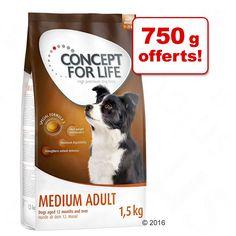 Animalerie  Concept for Life pour chien : 750 g  750 g offerts !  Large Sensitive