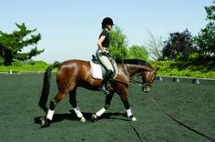 You CAN Master Sitting Trot—REALLY! | Practical Horseman Magazine - See more at: http://practicalhorsemanmag.com/article/you-cane28088master-sitting-trot-really-11539