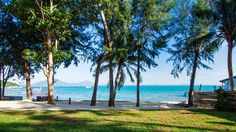 Samed Hideaway Resort (Official website), a peaceful and private beach on Koh Samed, situated right on the beach between Ao Noi Na Beach and Ao Klang. 5 min to Saikaew Beach. Tropical Garden, Contemporary Style, Great Places, Swimming Pools, Thailand, Relax, Island, Website, Beach